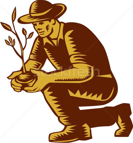 Organic Farmer Planting Tree Woodcut Linocut Stock photo © patrimonio