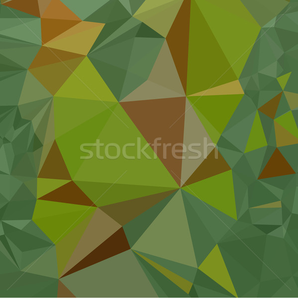 Sombre pastel vert résumé faible polygone Photo stock © patrimonio