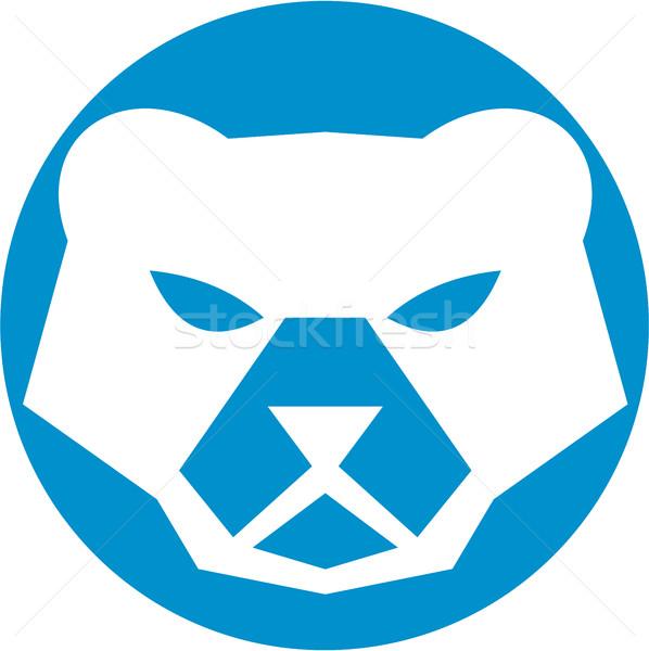 Oso polar cabeza círculo retro ilustración frente Foto stock © patrimonio