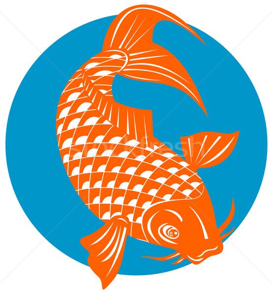 Koi karper vis springen illustratie retro-stijl Stockfoto © patrimonio