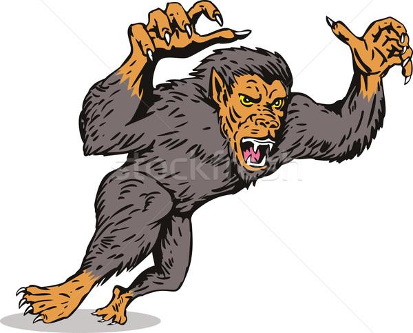 Werewolf Monster Stock photo © patrimonio