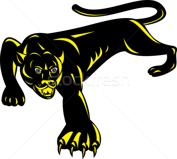 Puma prowling side view Stock photo © patrimonio