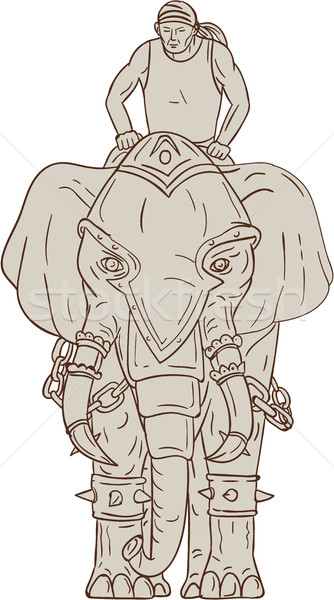 War Elephant Mahout Rider Drawing Stock photo © patrimonio