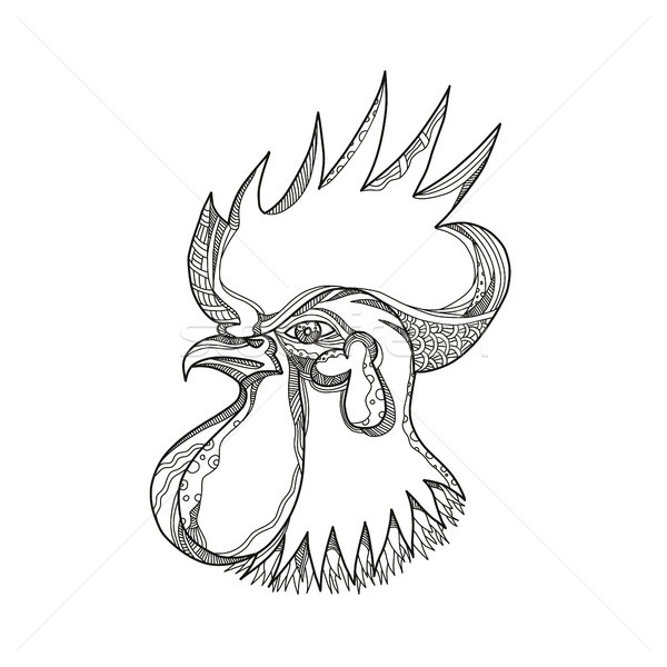 Junglefowl Head Doodle Art Stock photo © patrimonio