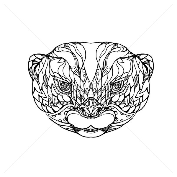 Oriental Small-clawed Otter Doodle Art Stock photo © patrimonio
