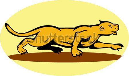 retriever dog in training jumping over an obstacle Stock photo © patrimonio