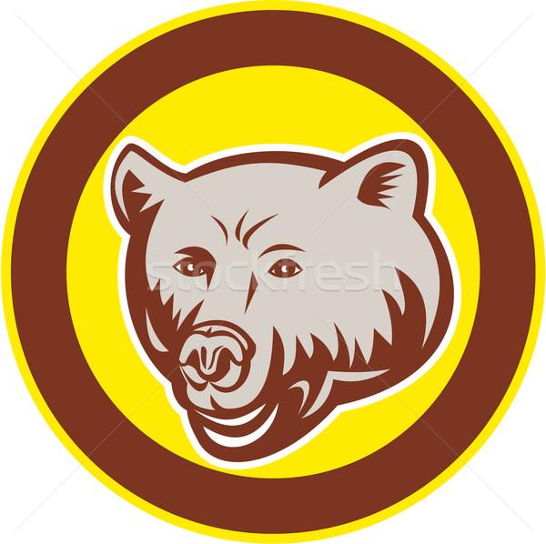 Grizzly medve fej kör retro illusztráció szett Stock fotó © patrimonio