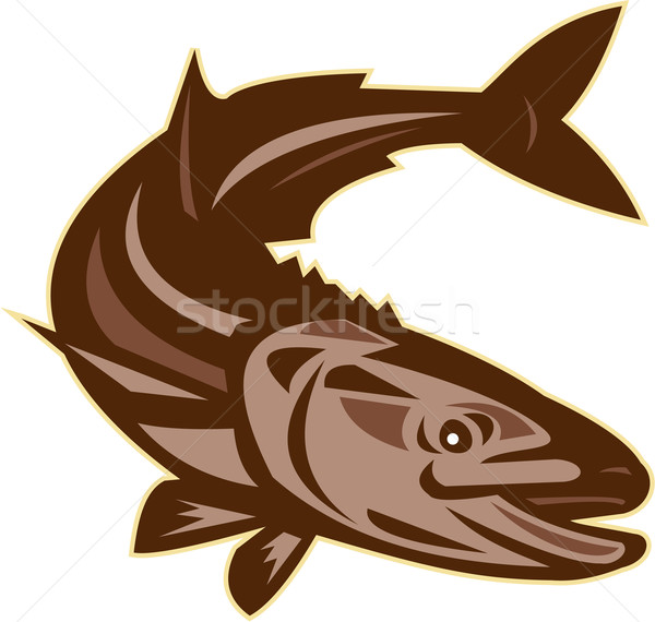 Cobia Fish Diving Down Retro Stock photo © patrimonio