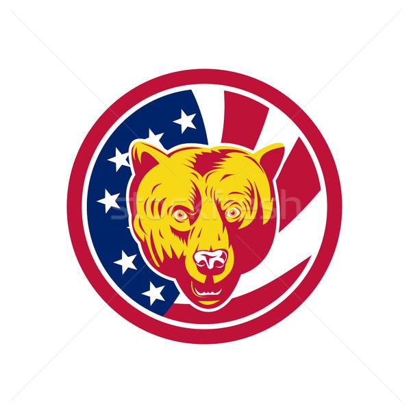 Amerikaanse bruine beer USA vlag icon retro-stijl Stockfoto © patrimonio