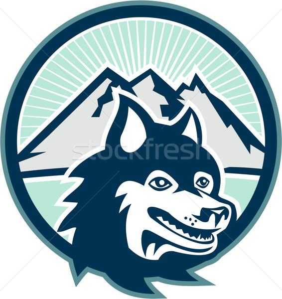 Stock fotó: Husky · kutya · fej · hegy · retro · illusztráció