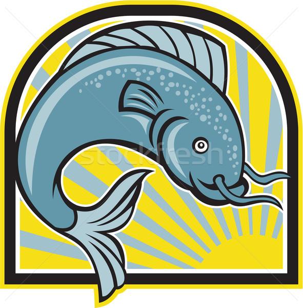Catfish Jumping Sunburst Cartoon Stock photo © patrimonio