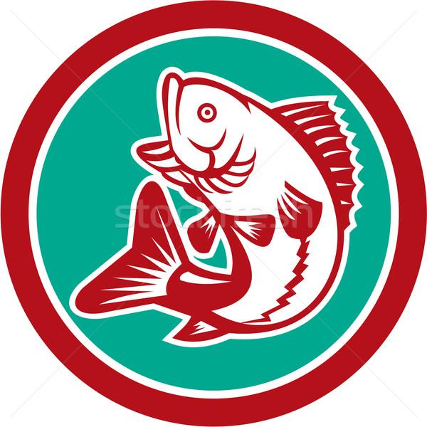 Bas atlama daire Retro örnek balık Stok fotoğraf © patrimonio