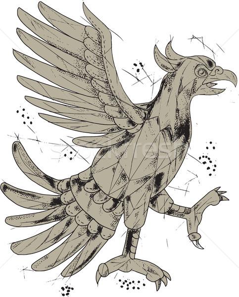 Aquila simbolo basso poligono stile illustrazione Foto d'archivio © patrimonio