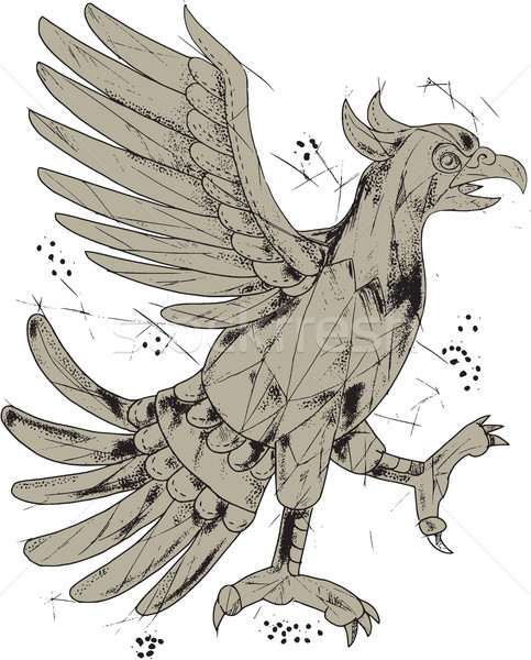 Aigle symbole faible polygone style illustration Photo stock © patrimonio