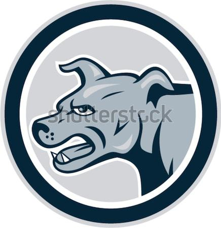 Black Labrador Head Circle Woodcut Stock photo © patrimonio