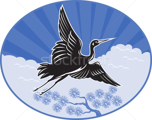 Grúa vuelo pino nubes ilustración establecer Foto stock © patrimonio
