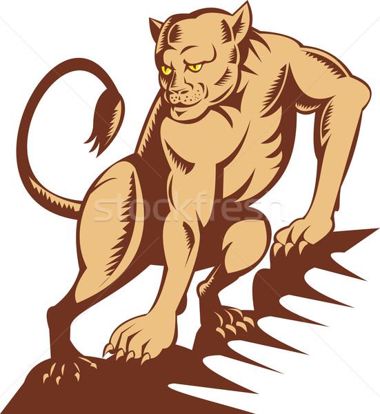 lioness on the prowl  Stock photo © patrimonio