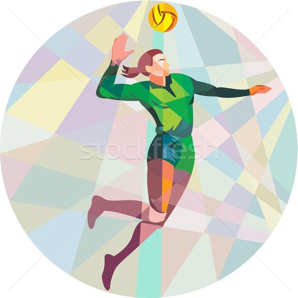 voleibol jogador bola saltando baixo pol gono