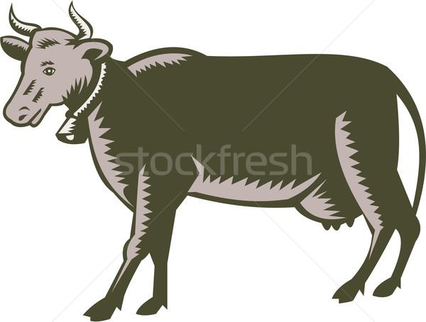 Lácteo vaca vista lateral ilustración toro lado Foto stock © patrimonio
