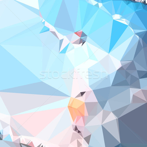 Air Superiority Blue Abstract Low Polygon Background Stock photo © patrimonio