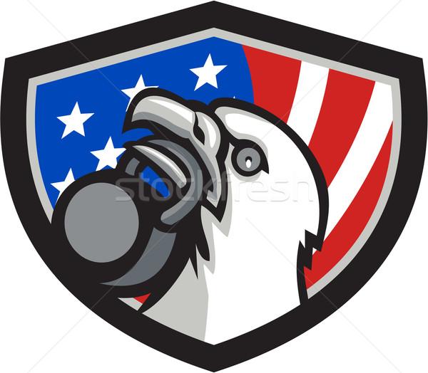 Careca Águia EUA bandeira escudo Foto stock © patrimonio