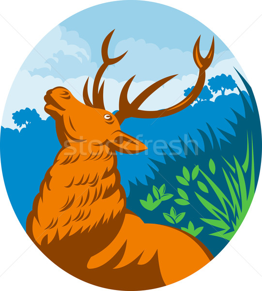 Roaring red stag deer with forest  Stock photo © patrimonio