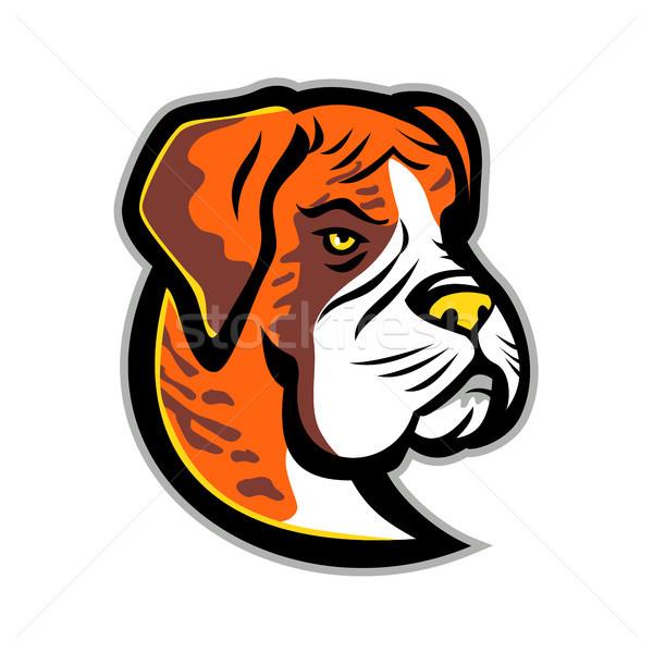 Boxer Dog Mascot Stock photo © patrimonio