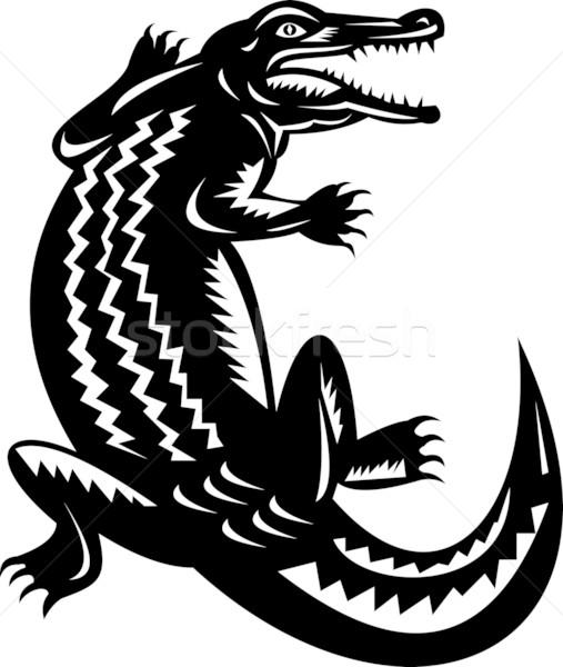 Krokodil Illustration Retro schwarz und weiß Tier isoliert Stock foto © patrimonio