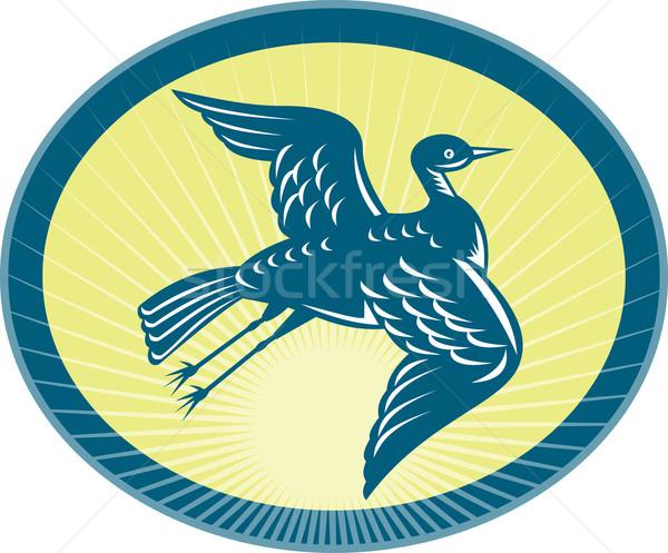 heron flying up side view with sunburst Stock photo © patrimonio