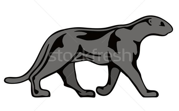 Panther Walking Stock photo © patrimonio