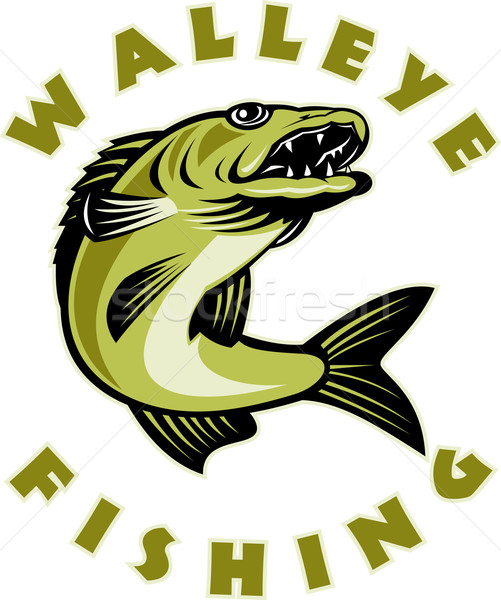 Walleye fish jumping Sander vitreus Stock photo © patrimonio