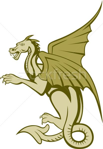 Zöld sárkány egészalakos rajz illusztráció oldal Stock fotó © patrimonio