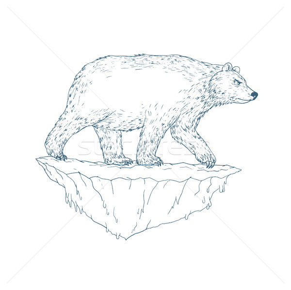 Ours polaire marche iceberg style illustration Photo stock © patrimonio