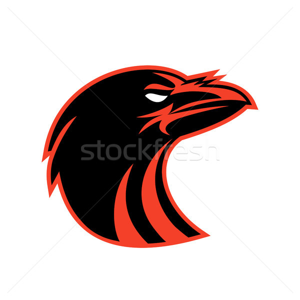Zangado corvo cabeça ícone estilo ilustração Foto stock © patrimonio