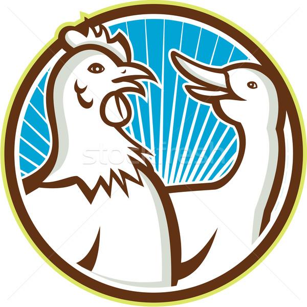 Kip gans cartoon illustratie groep kip Stockfoto © patrimonio