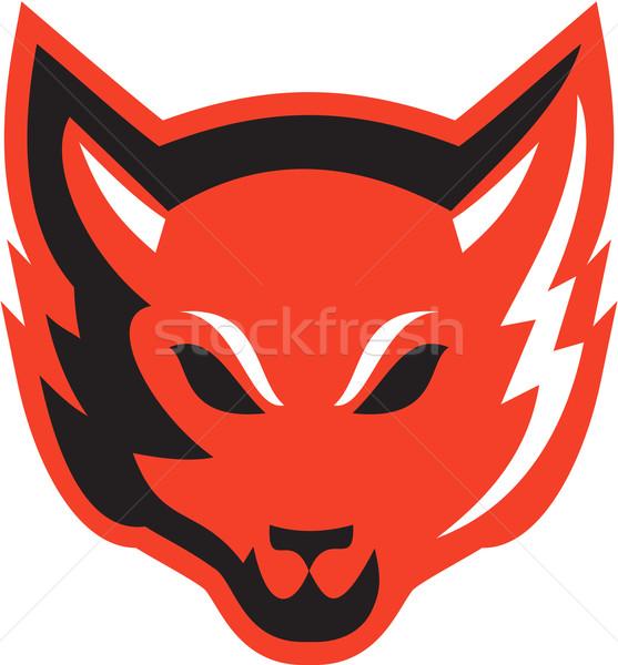 Vermelho raposa cabeça ilustração zangado Foto stock © patrimonio