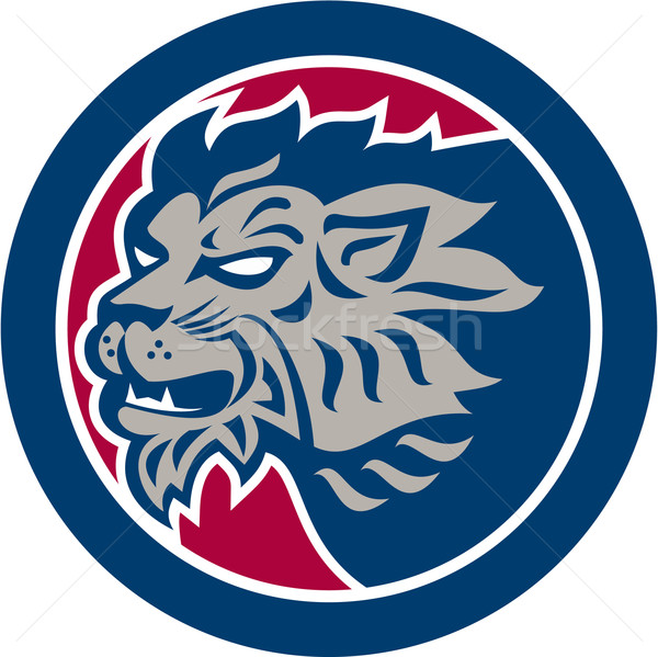 Lion Head Side Retro Circle Stock photo © patrimonio