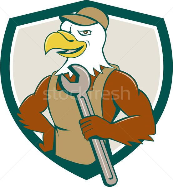 Amerikaanse kaal adelaar monteur moersleutel kuif Stockfoto © patrimonio