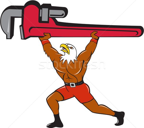 лысые орел водопроводчика обезьяны ключа изолированный Сток-фото © patrimonio