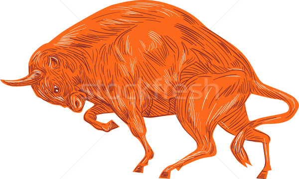 European Bison Charging Drawing Stock photo © patrimonio