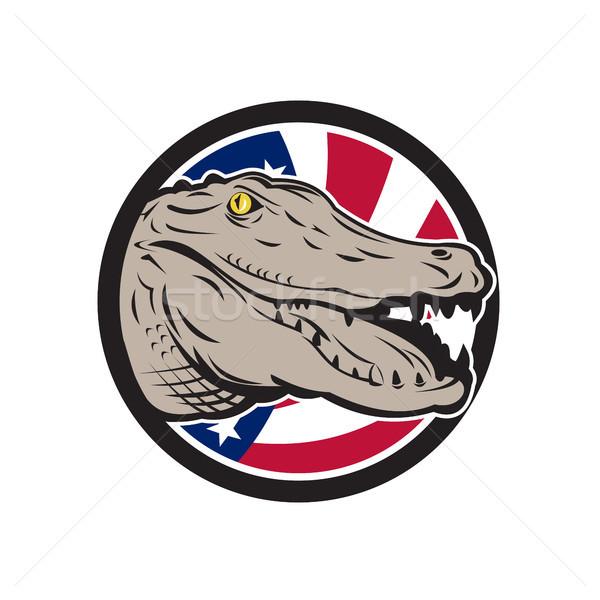 Amerykański aligator USA banderą ikona w stylu retro Zdjęcia stock © patrimonio