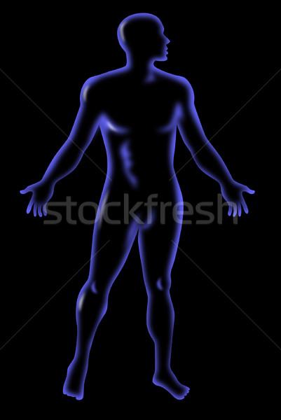 Masculino anatomia humana em pé ilustração isolado Foto stock © patrimonio
