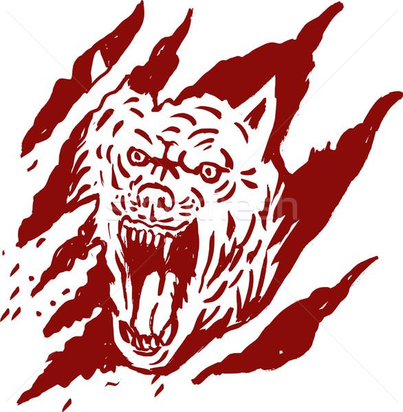 Enojado lobo dentro pata lacrimógenos cero Foto stock © patrimonio