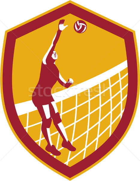 Volleyball Player Spike Ball Net Retro Shield Stock photo © patrimonio