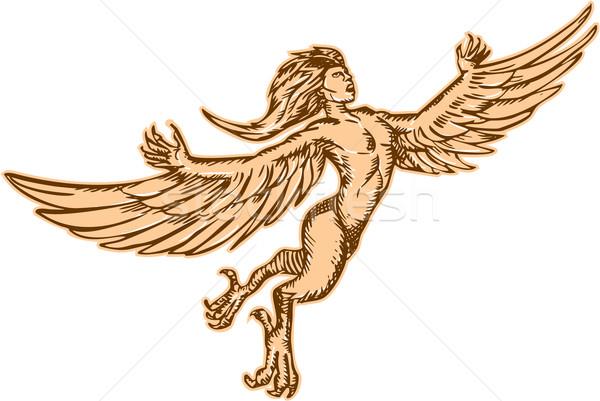 Harpy Flying Front Etching Stock photo © patrimonio