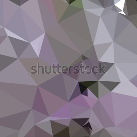 Antiguos púrpura resumen bajo polígono estilo Foto stock © patrimonio