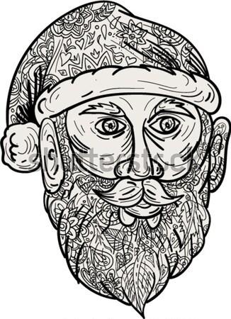 Hoofd mandala stijl illustratie Stockfoto © patrimonio