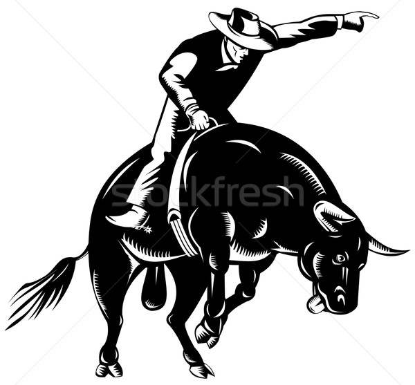 Rodeo cowboy stier paardrijden retro illustratie Stockfoto © patrimonio