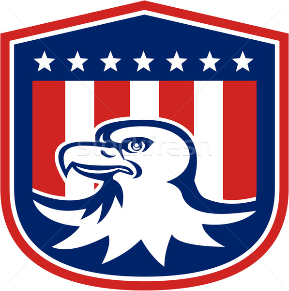 Amerikai kopasz sas fej zászló pajzs Stock fotó © patrimonio