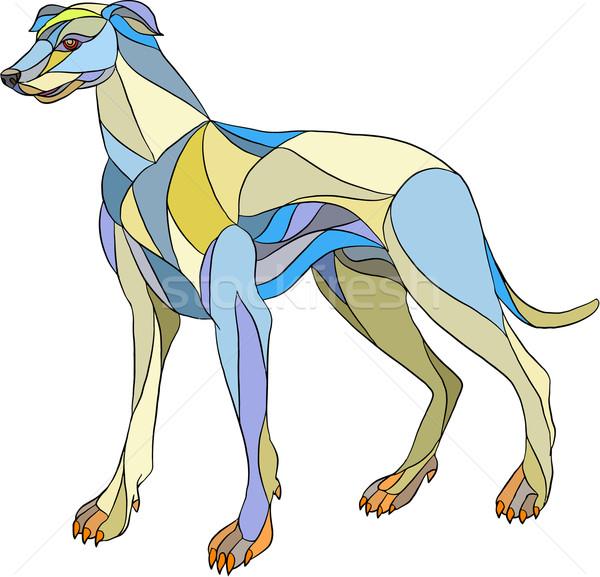 Galgo cão lado mosaico estilo ilustração Foto stock © patrimonio